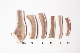 Bois de cerf coupé XS à XXL