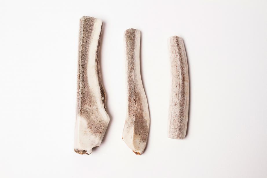 Bois de cerf contre tartre